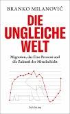 Die ungleiche Welt (eBook, ePUB)