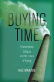 Buying Time: Environmental Collapse and the Future of Energy