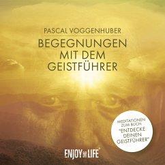 Begegnungen mit dem Geistführer, 1 Audio-CD - Voggenhuber, Pascal
