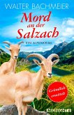 Mord an der Salzach (eBook, ePUB)