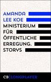Ministerium für öffentliche Erregung (eBook, ePUB)