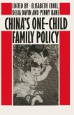 China's One-Child Family Policy (eBook, PDF)