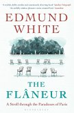The Flaneur (eBook, ePUB)