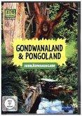 Gondwanaland & Pongoland - Jubiläumsausgabe, 1 DVD