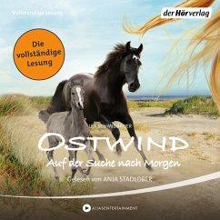 Auf der Suche nach Morgen / Ostwind Bd.4 (MP3-Download) - Schmidbauer, Lea