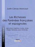 Les Richesses des Pyrénées françaises et espagnoles (eBook, ePUB)