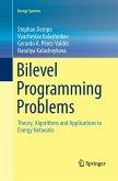 Bilevel Programming Problems
