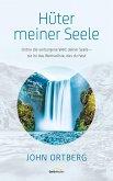 Hüter meiner Seele (eBook, ePUB)