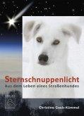 Sternschnuppenlicht (eBook, ePUB)