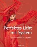Perfektes Licht mit System (eBook, ePUB)