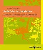 Aufbrüche in Umbrüchen (eBook, PDF)