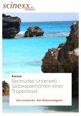 Bermudas Unterwelt (eBook, ePUB)