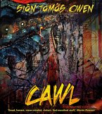 Cawl (eBook, ePUB)