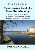 Wanderungen durch die Mark Brandenburg (eBook, ePUB)