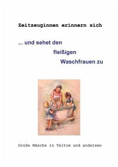 ... und sehet den fleißigen Waschfrauen zu (eBook, ePUB)