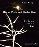 Bacha Posh und Bacha Bazi (eBook, ePUB)