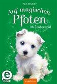 Im Zauberwald / Auf magischen Pfoten Bd.6 (eBook, ePUB)