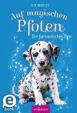 Ein fantastisches Fest / Auf magischen Pfoten Bd.5 (eBook, ePUB)