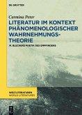 Literatur im Kontext phänomenologischer Wahrnehmungstheorie (eBook, ePUB)