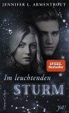 Im leuchtenden Sturm / Götterleuchten Bd.2