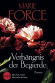 Verhängnis der Begierde / Detective Holland Bd.2