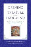 Opening the Treasure of the Profound (eBook, ePUB)