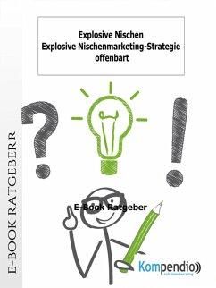 Explosive Nischen (eBook, ePUB) - Albrecht, Ulrike