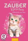 Plötzlich ein Star! / Zauberkätzchen Bd.3 (eBook, ePUB)