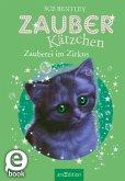 Zauberei im Zirkus / Zauberkätzchen Bd.6 (eBook, ePUB)