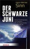 Der Schwarze Juni (eBook, ePUB)