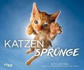 Katzensprünge (eBook, ePUB)