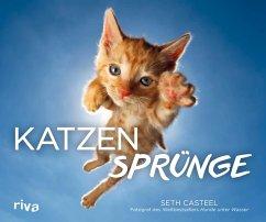 Katzensprünge (eBook, ePUB) - Casteel, Seth