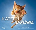 Katzensprünge (eBook, PDF)