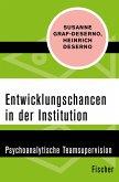 Entwicklungschancen in der Institution (eBook, ePUB)
