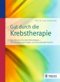 Gut durch die Krebstherapie (eBook, ePUB)