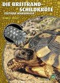 Die Breitrandschildkröte (eBook, ePUB)