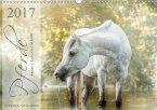 Pferde - Anmut, Eleganz, Magie (Wandkalender 2017 DIN A3 quer)