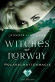 Polarschattenmagie / Witches of Norway Bd.2 (eBook, ePUB)
