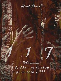 117 (eBook, ePUB)