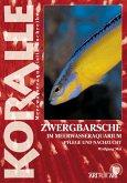 Zwergbarsche im Meerwasseraquarium (eBook, ePUB)