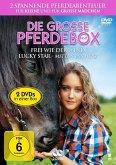 Die grosse Pferdebox No. 2: Frei wie der Wind / Lucky Star - Mitten ins Herz 2 in 1 Edition