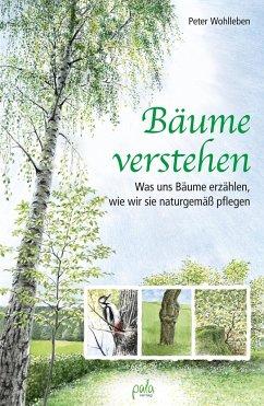 Bäume verstehen - Wohlleben, Peter