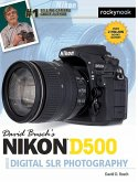 David Busch's Nikon D500 Guide to Digital SLR Photography (eBook, ePUB)