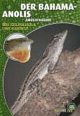 Der Bahama-Anolis (eBook, ePUB)
