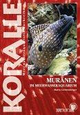 Muränen im Meerwasseraquarium (eBook, ePUB)