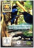 Elefant, Tiger & Co. - Von kleinen Drachen und Elfenblauvögeln, 1 DVD