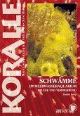 Schwämme im Meerwasseraquarium (eBook, ePUB)