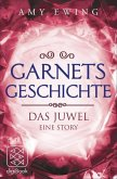 Garnets Geschichte / Das Juwel (eBook, ePUB)