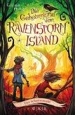 Der Schattenwald / Die Geheimnisse von Ravenstorm Island Bd.4