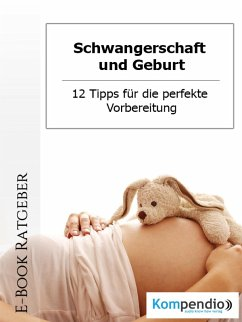 Schwangerschaft und Geburt (eBook, ePUB) - Nelz, Daniela